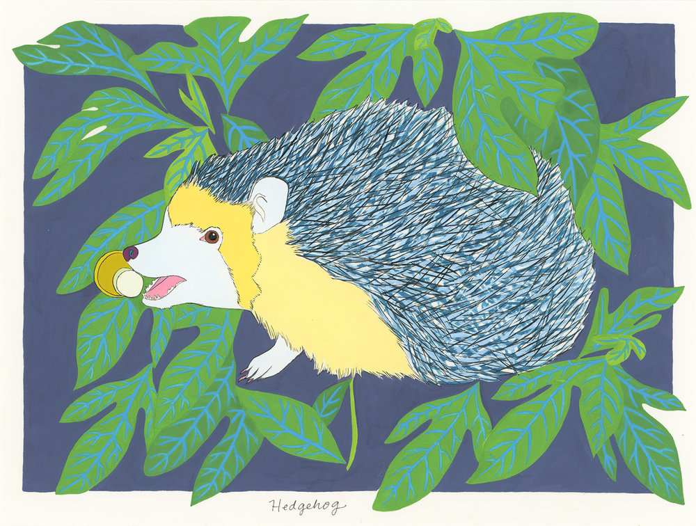 Hedgehog (for the one obsessed with a doorstop) , 2014, gouache and ink on Arches paper, 6 x 8 in.