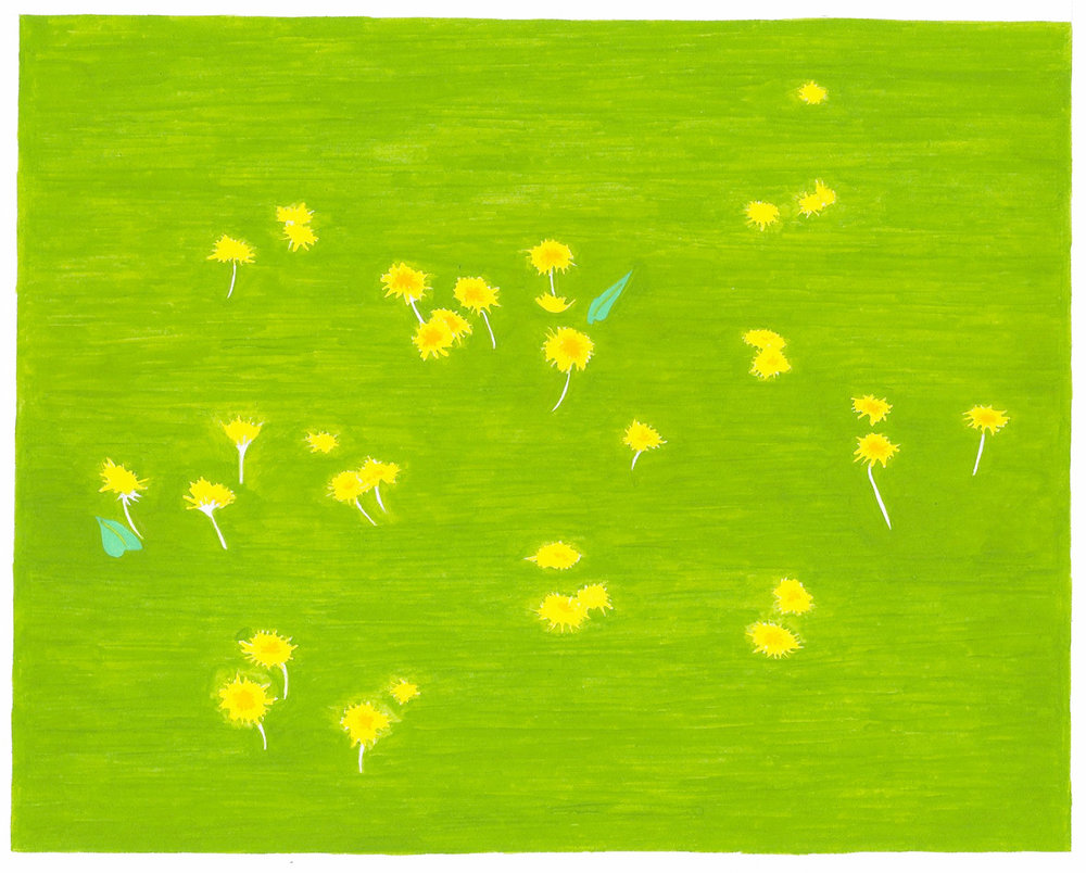 Dandelions , 2017, gouache and ink on Arches paper, 7 x 8 1/2 in.