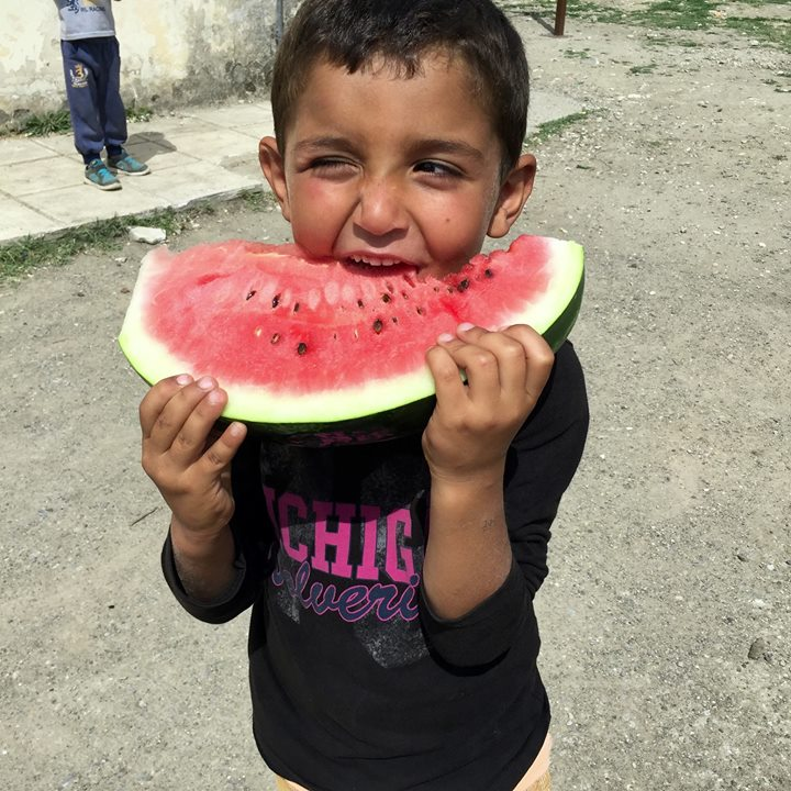Watermelons from the Camp Dr's