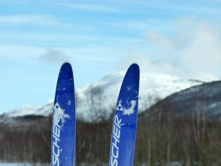 Skiing 14