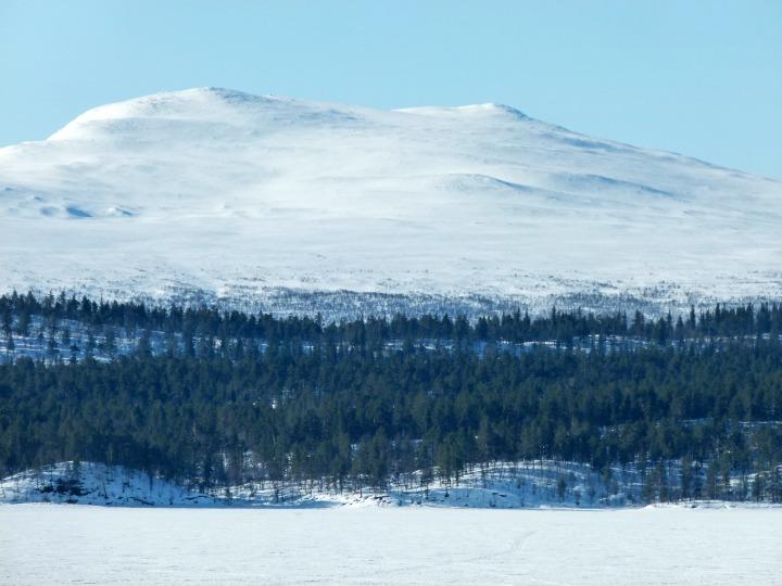 Swedish-Cabin-30.jpg