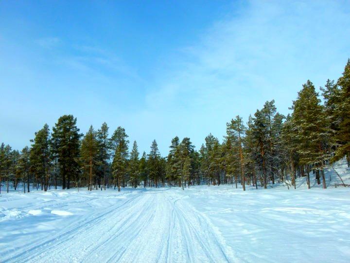 Swedish Lapland 1