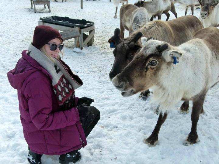 Reindeer-13.jpg