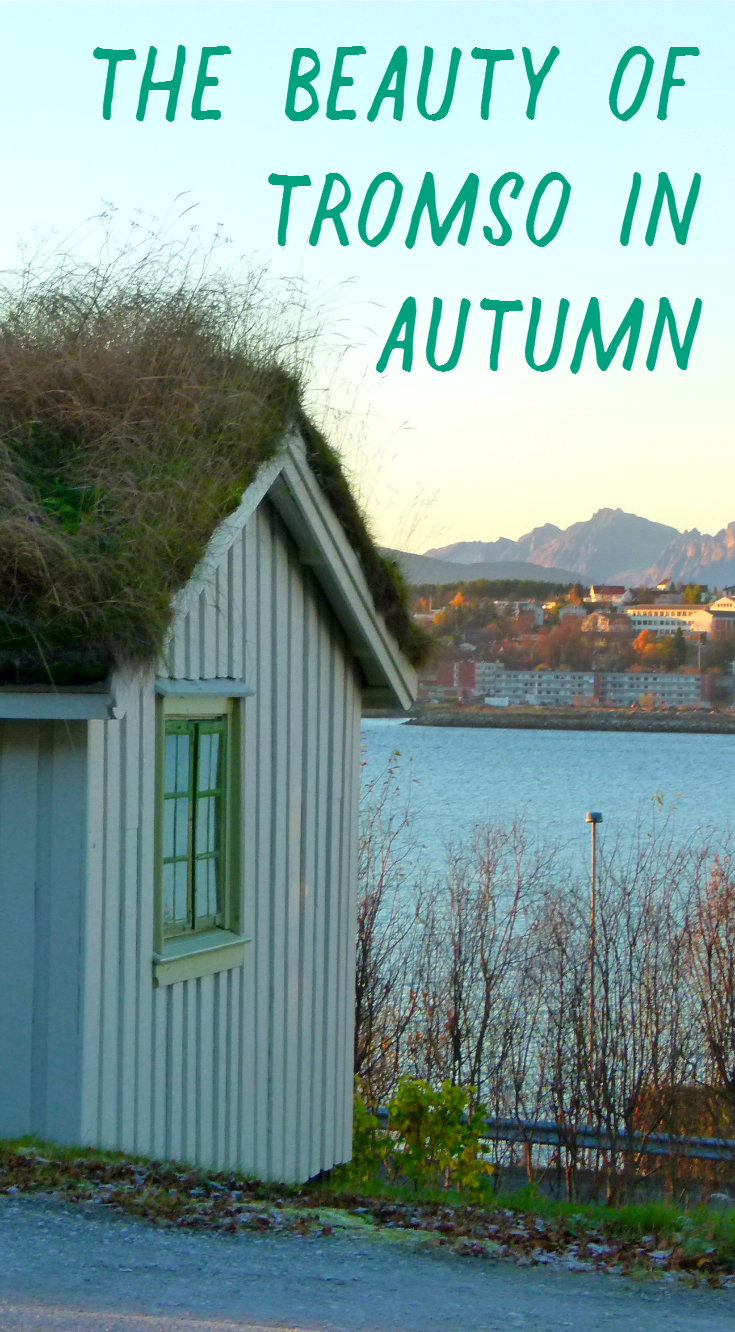 The beauty of Arctic Tromso during autumn.png