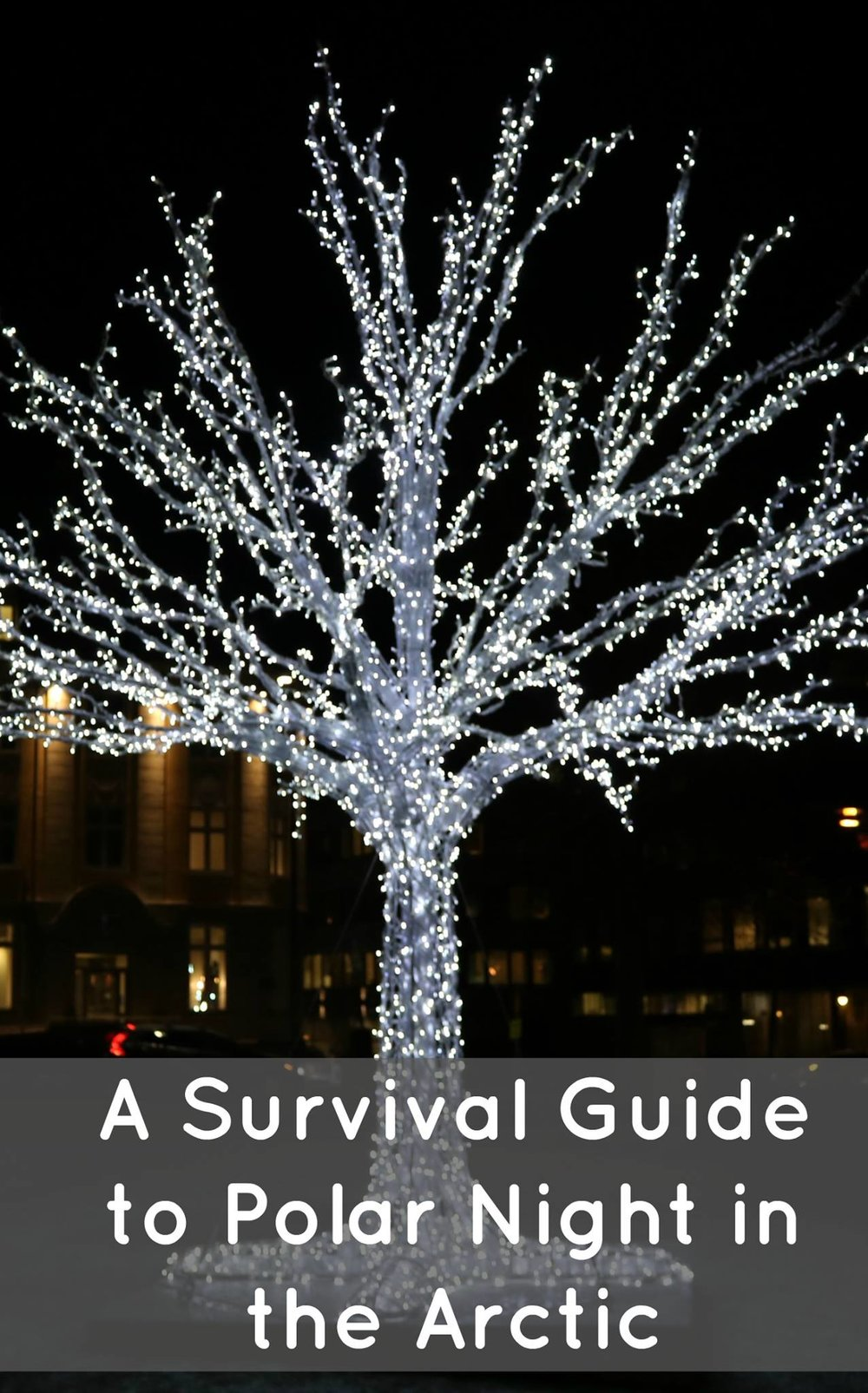 survive polar night guide pinterest pic.jpg