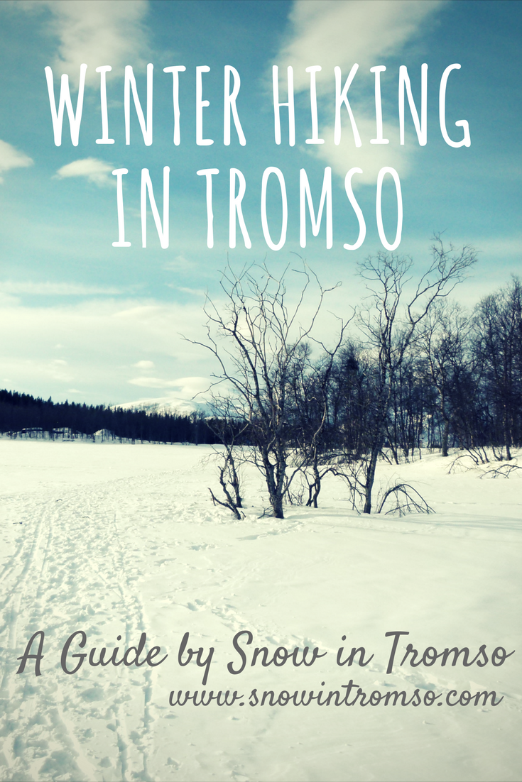 Headed to Tromso in winter but never been mountain hiking? No worries, here are some very easy but still scenic hikes on Tromso Island and nearby!