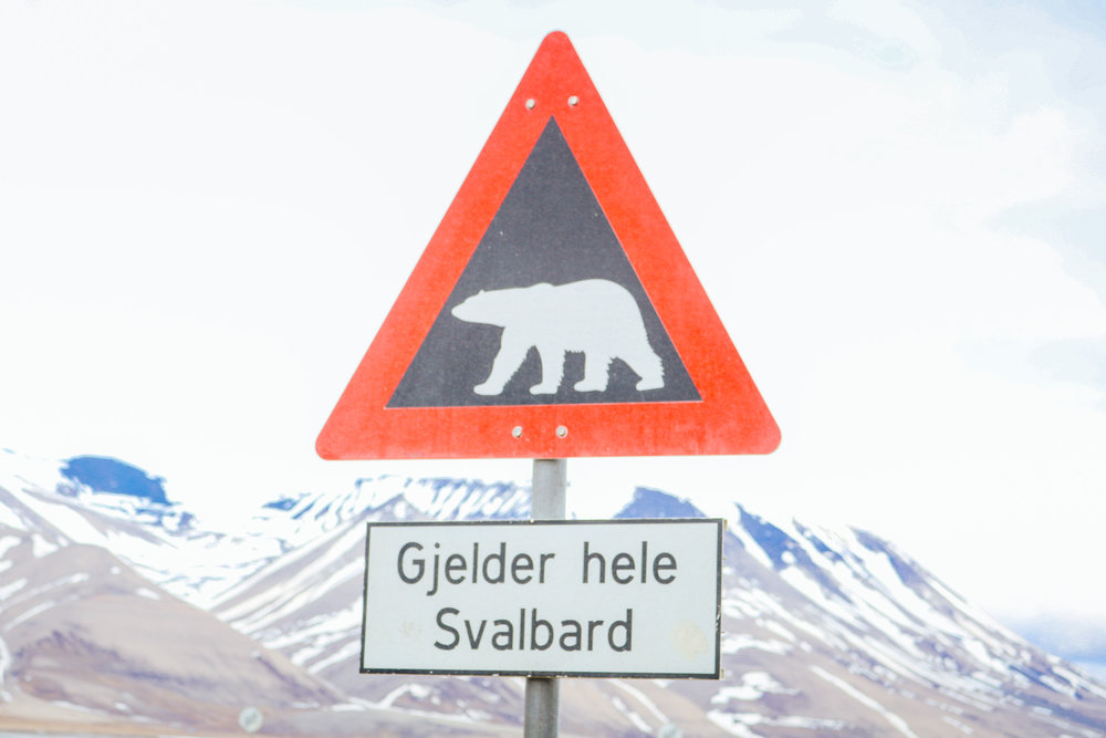 what's it like to live in longyearbyen svalbard