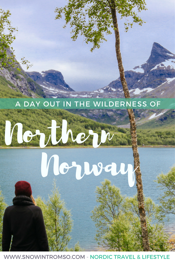 Would you like to experience the fjords of Northern Norway one day? Click through to read about my day out in the wilderness at Sjunkfjorden near Bodø