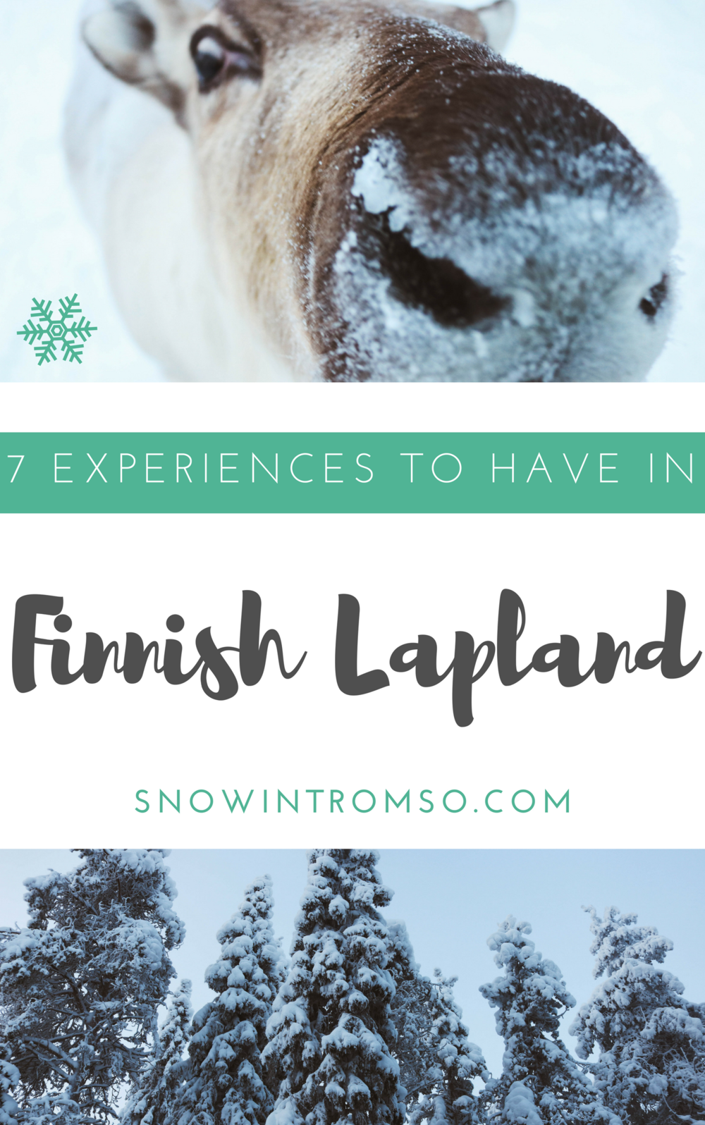 Considering a trip to Finnish Lapland? Here are 7 experiences you should have in Ruka-Kuusamo!