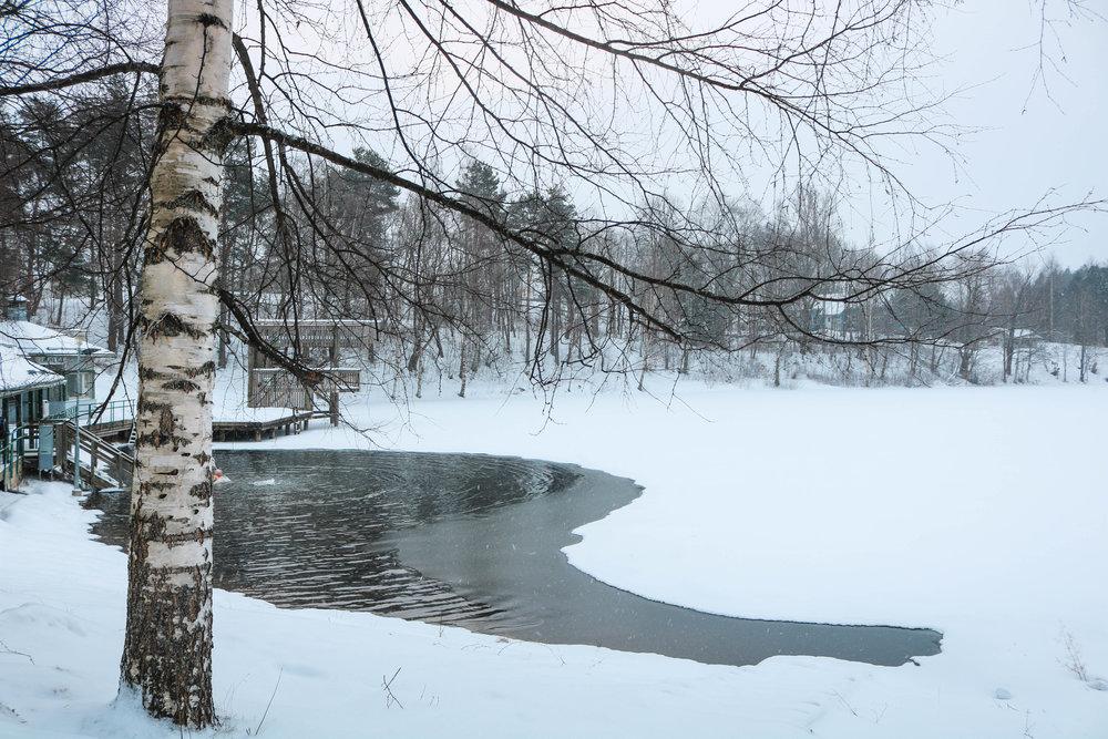ice swimming sauna culture finland