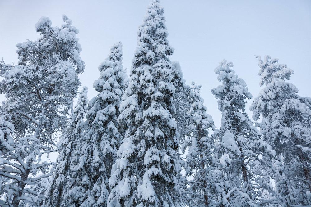 ruka kuusamo finland