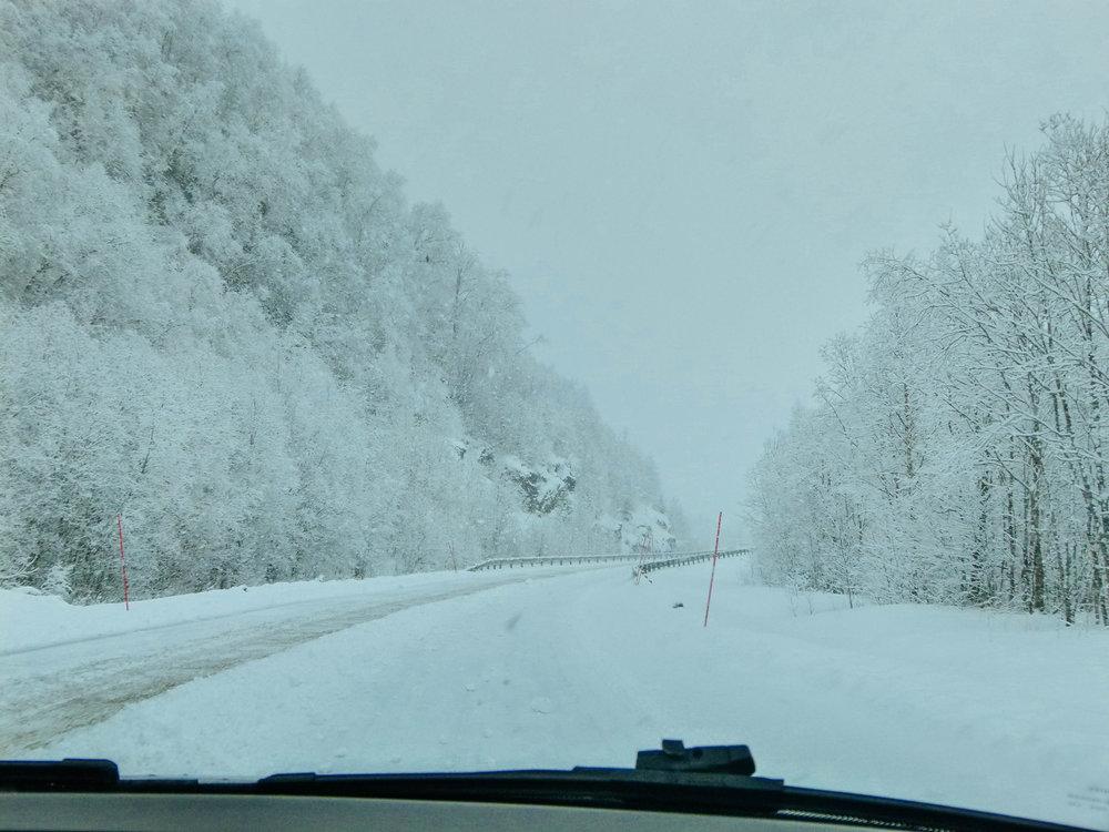 Während eines Schneesturms im März