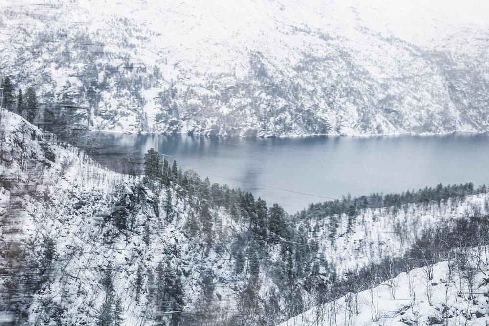 Vorbei an dem wunderschönen Ofotfjord in der Nähe von Narvik im Zug nach Kiruna