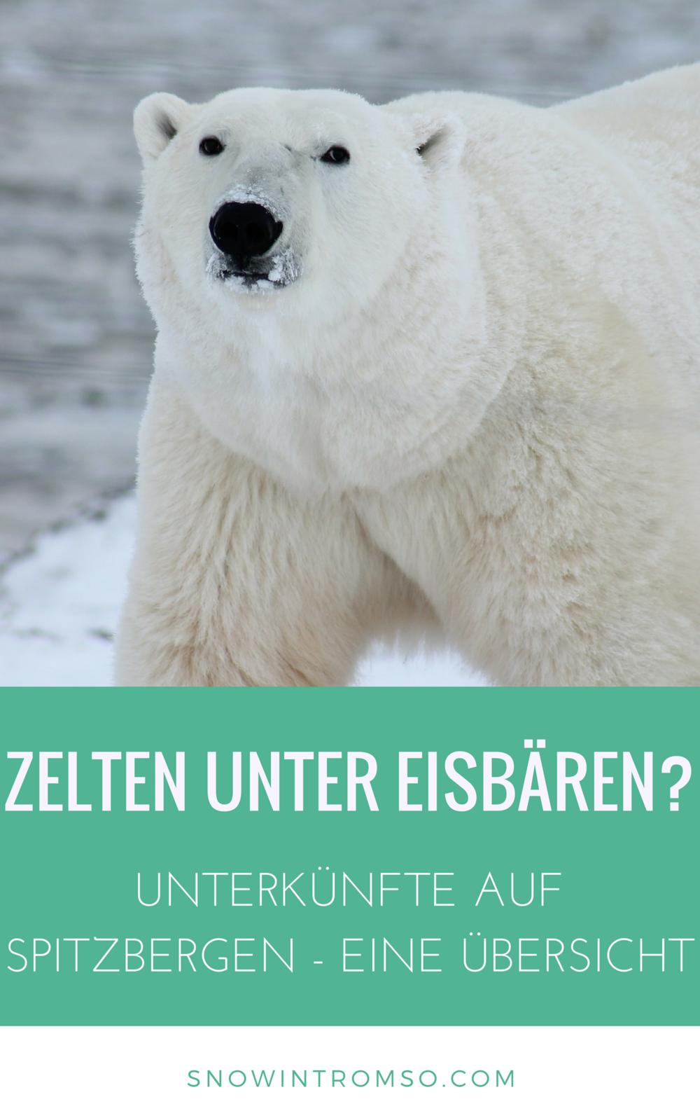 Unterkünfte auf Spitzbergen müssen nicht teuer sein! Hier findest Du eine Übersicht über alle Hostels und Hotels in Longyearbyen und Barentsburg!