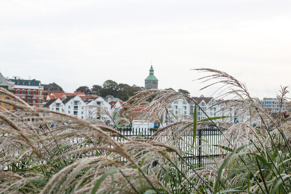 Headed to Stavanger? - Read my travel tips and expat stories about Norway's Oil Capital!