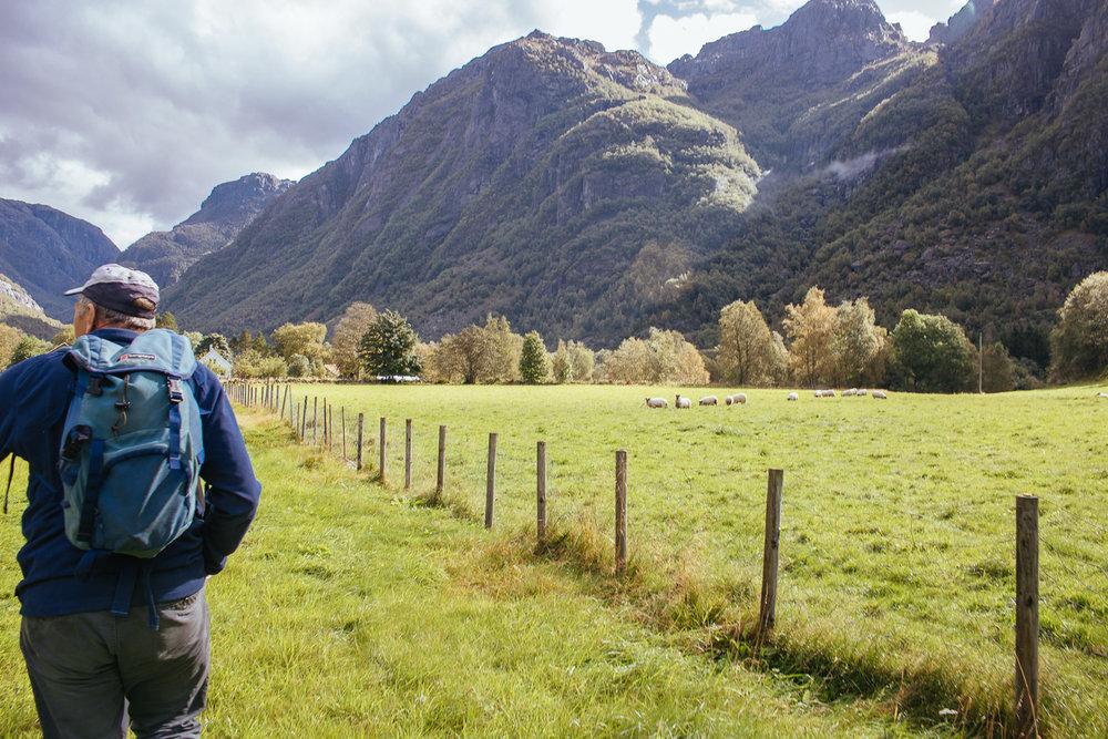 easy hikes in stavanger