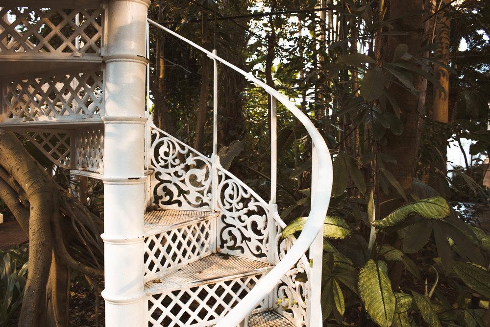 palm house botanical garden copenhagen instagram spot.jpg