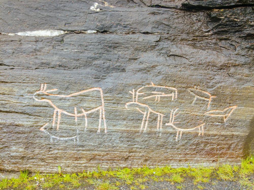 rock carvings hella kvaløya tromsø