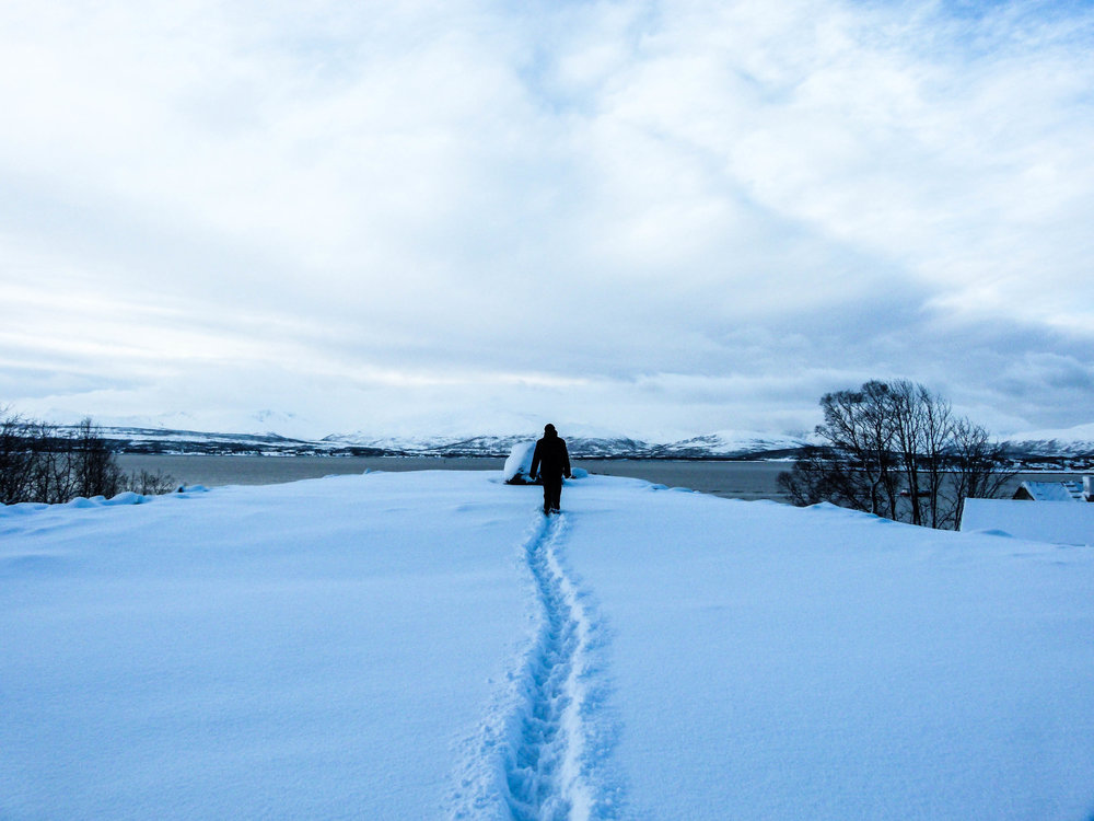how much snow is there in tromso
