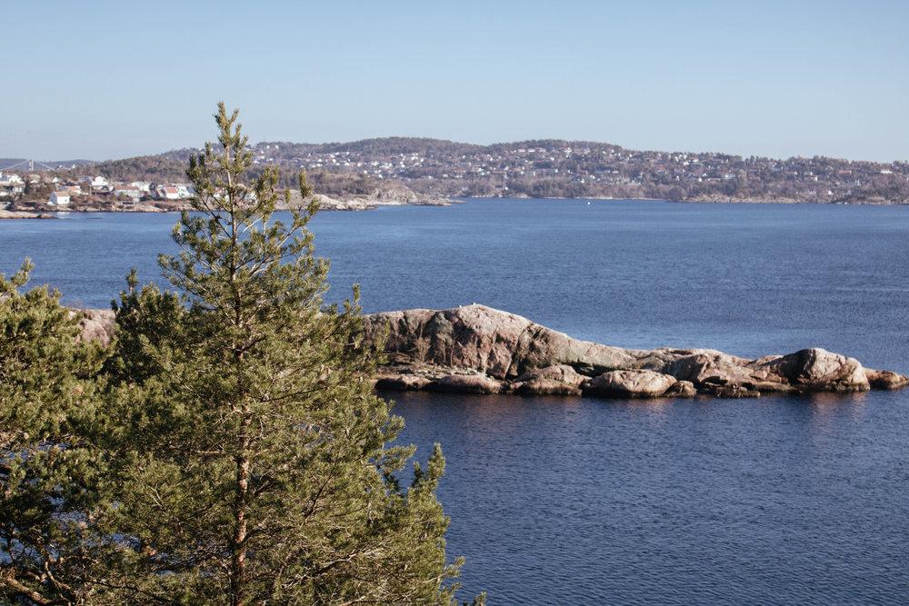 Odderøya, Kristiansand