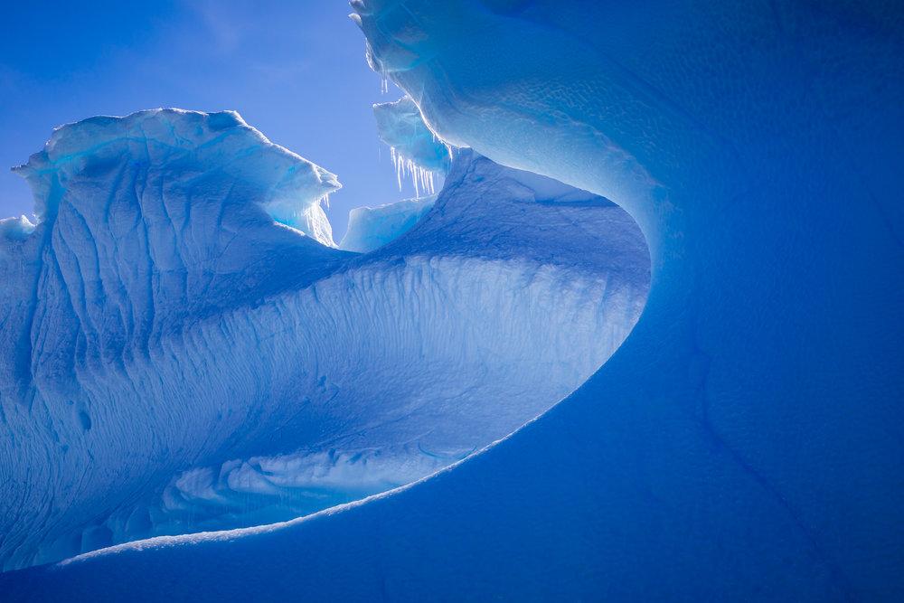 apeacock_antarctica_170125-43713.jpg