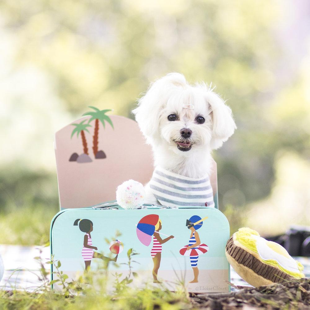 Summer Stripe Bandana