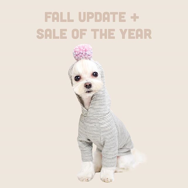 Fall update ➕ Thanksgiving Sale event is LIVE NOW 👉 StudioEloise.com 👉 Link in Bio 👌 . If you have been following us since the beginning, you'll know this is indeed the biggest sale event ever for Studio Eloise 😊 We have been quiet for awhile this year as both Elly and I was going through a particularly rough time 🤧 Now that things are looking better we really wanted to thank you all for supporting and waiting for us. . I hope you find a perfect deal for you on StudioEloise website today & I hope you all have wonderful Thanksgiving weekend. Hugs and kisses to you all ❤️