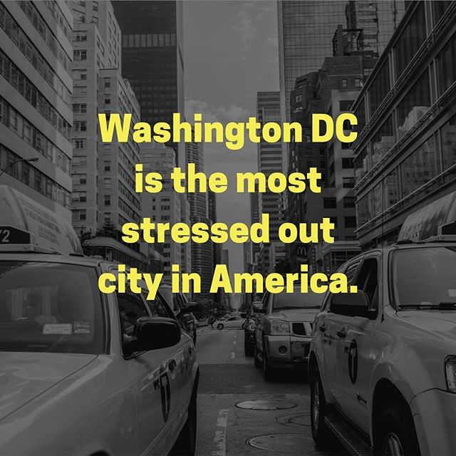 According to Movoto's Poll, Washington DC takes the lead in stress followed by New York and Miami. ⠀ ⠀ ⠀ #washingtondc⠀ #dc  #stressfreedc #stress⠀ #stressedout #citylife #newyork #nyc #miami #GetHighOnYourOwnSupply #stressrelief #stressfree #stressed #stressedout #stressless #stressmanagement  #stressful #stressreduction #stressrelease #stressfreelife #stresstherapy  #stressfix #StressAwareness ⠀ #robhartman #movoto