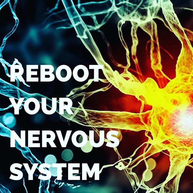 """Join us May 20th at 1pm for our latest #workshop! Click the """"Get Tickets"""" button in our profile to sign up!  #Reboot your nervous system + learn how to take your #stress level to zero!  #stressfreedc #stressfreedcevent #wimhof #breathwork #icebath #robhartman #mydccool #stressrelief #dcevents"""