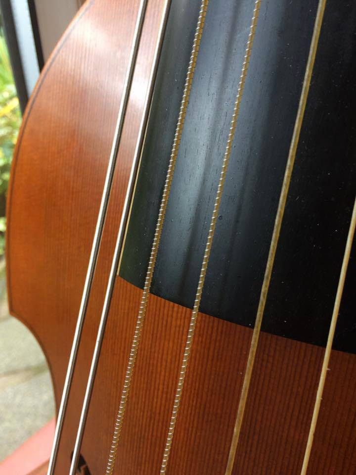 Fig. 4: Two close wound strings made by me, with historical gut to silver ratios, and two Demi File strings on a Seven String Bass Viol