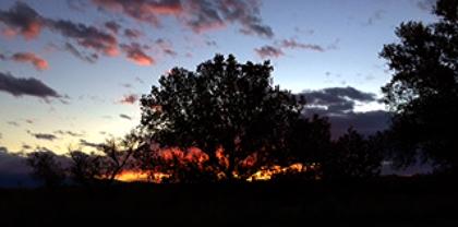 Sunrise at Sparrow Hawk Farm, Nov. 5, 2015