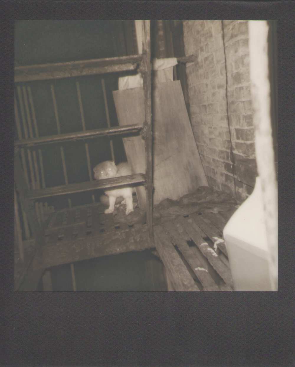 424 quincy. 2012 expired polaroid