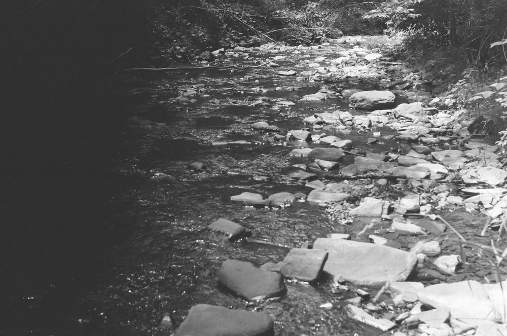 Riverbed . 2016 35mm