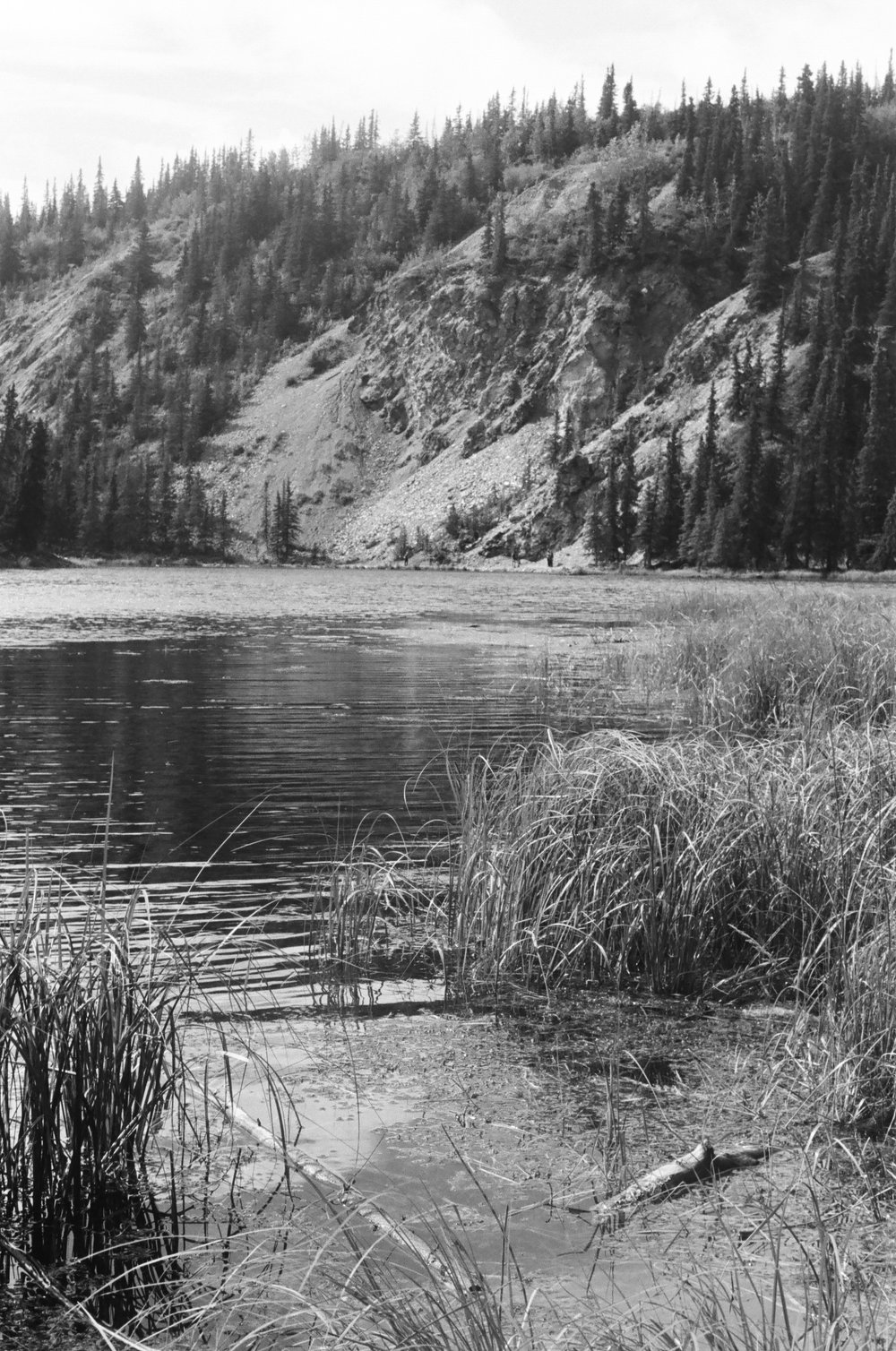 Horseshoe Trail Lake . 2016 35mm