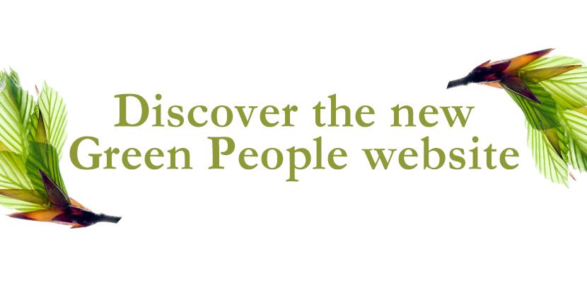 DiscoverNewWebsite.jpg