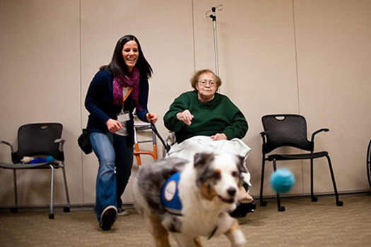 Caeli retrieves a ball for her patient. (photo courtesy of Lumen Photography)