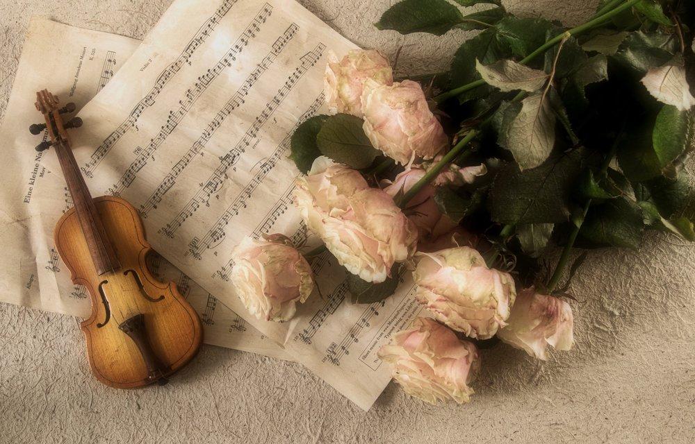 violin-2946996_1920.jpg