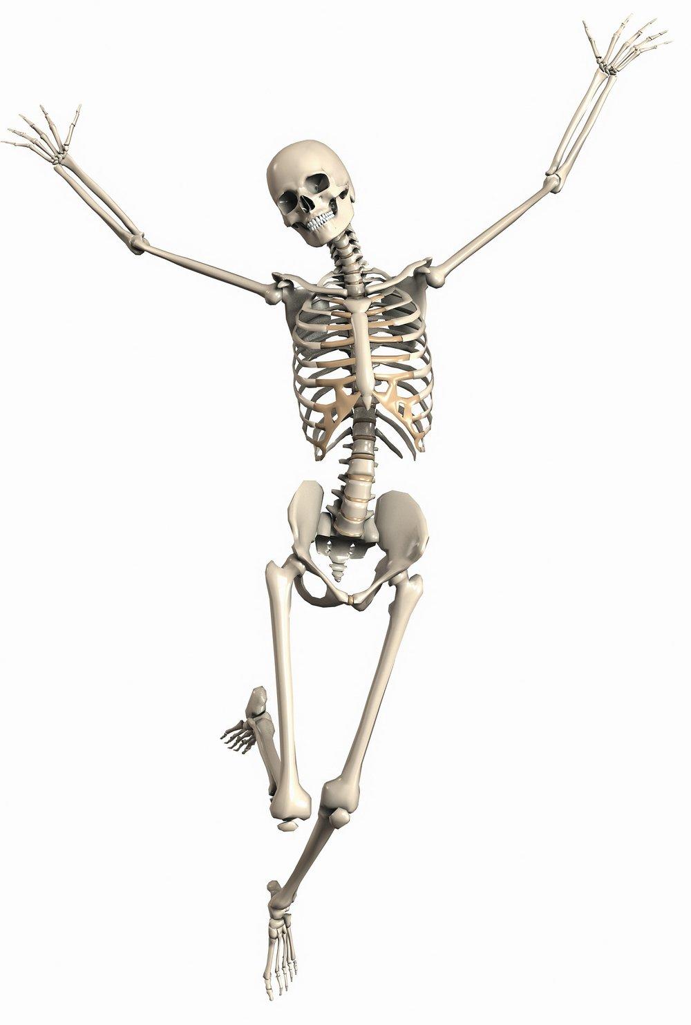 Bone health.jpg