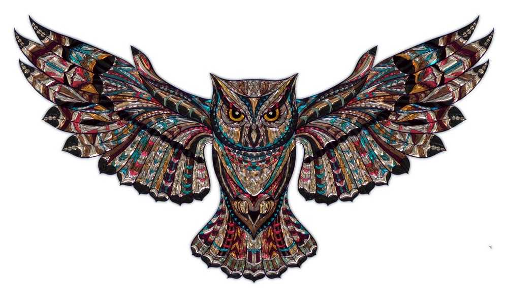Owl Tough