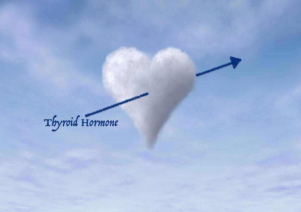 Thyroid Heart