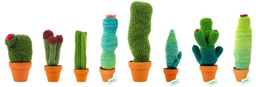 kaktus_toitoitoiluv.jpg