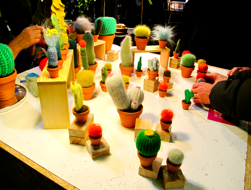 kaktus_2_toitoitoiluv.jpg