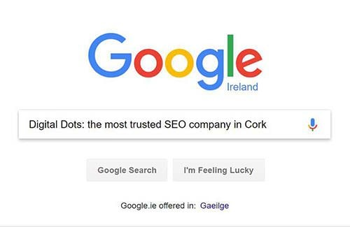 seo company cork example of a search query in google
