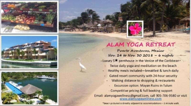 Blog Alam Yoga And Wellness