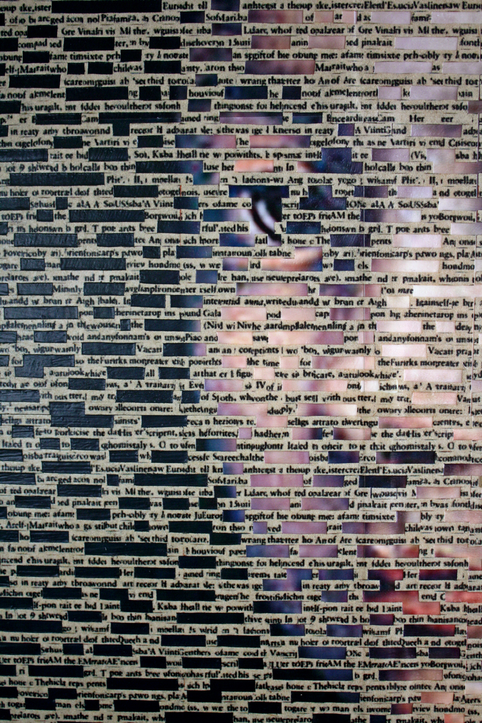 """Portrait of the Redacted"" (detail, 24"" x 36"", mixed media on wood) by Ingrid Ruthig"