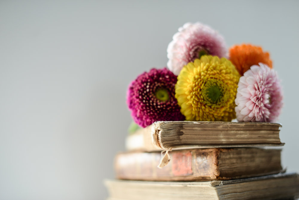 gerbera flowers on books