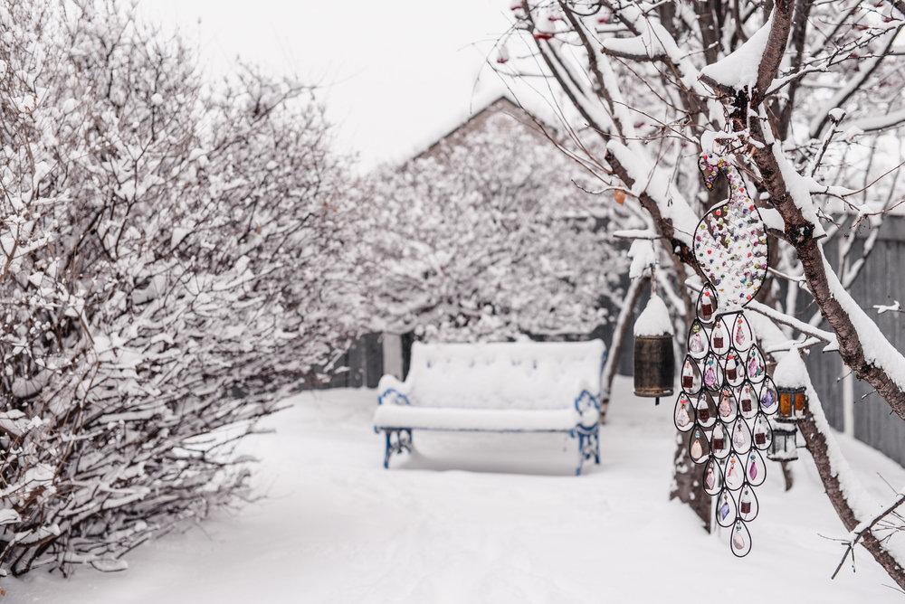 05-snow day-9.jpg
