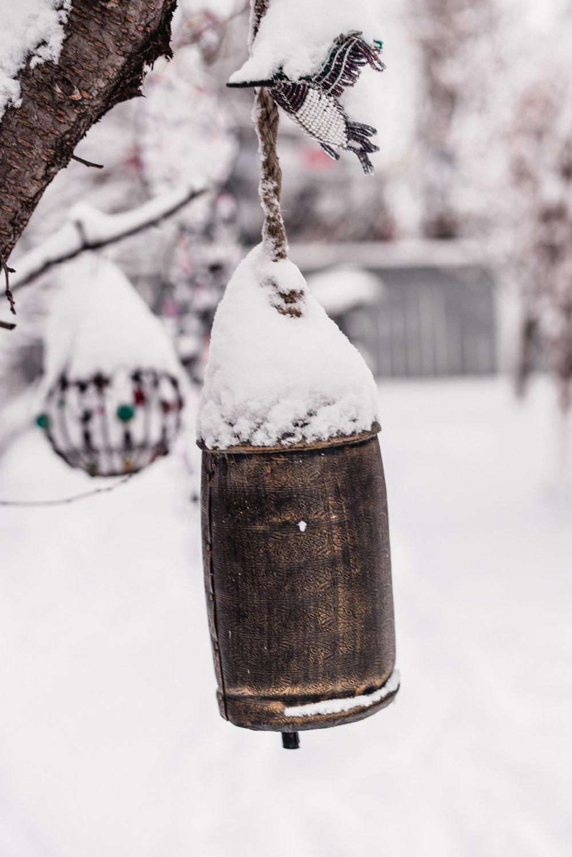 06-snow day-10.jpg