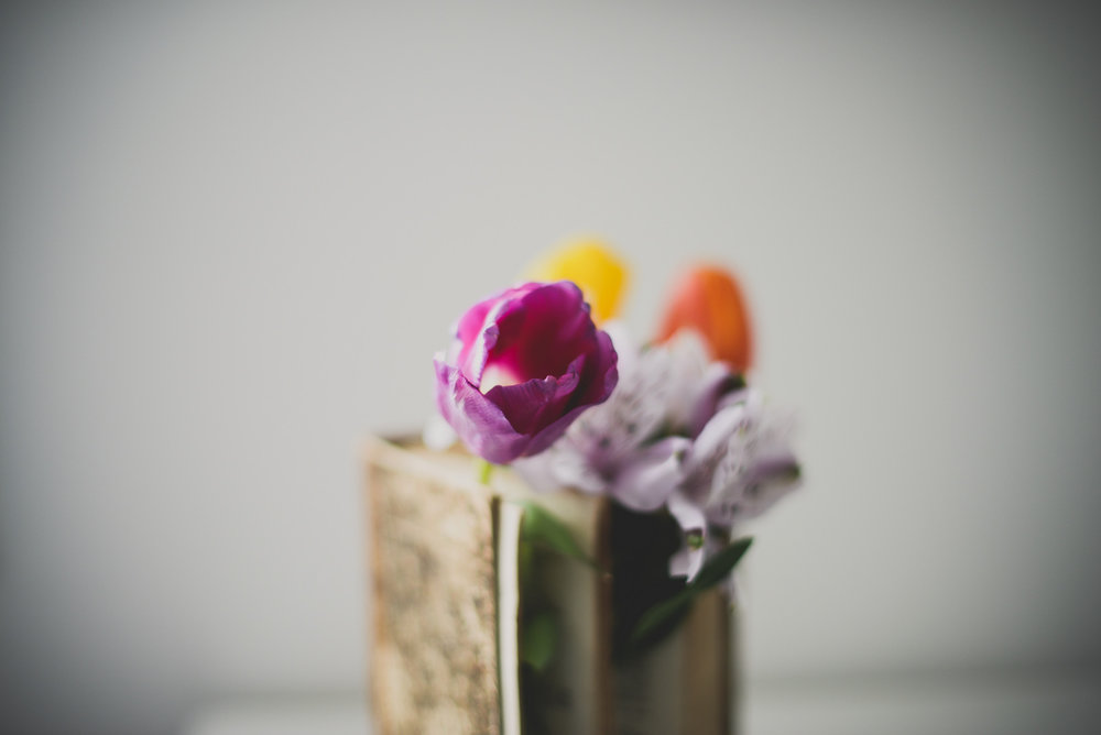 purple tulip and old book