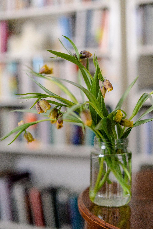 1-spring flowers-26.jpg